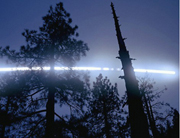 A Moon Trail, Trees, Yosemite National Park (Edition 9)S