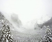 Snowstorm, Yosemite Valley (Edition 9)M
