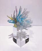 crystal series 22