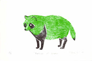 Racoon of green