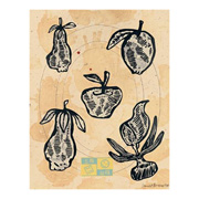 Fruits (portfolio of 5)